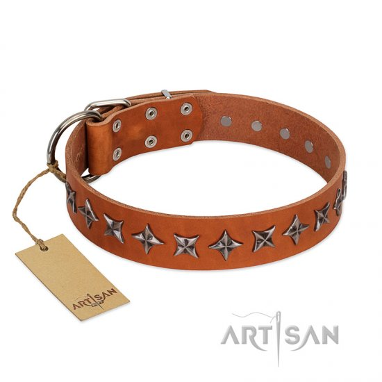 """Star Trek"" FDT Artisan Tan Leather Doberman Collar Decorated with Stars"