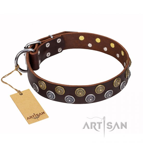 'Strong Shields' FDT Artisan Brown Leather Doberman Collar with Stylish Circular Studs