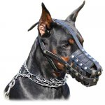 Doberman everyday super ventilation leather muzzle