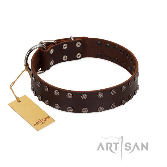 """Star Party"" Handmade FDT Artisan Brown Leather Doberman Collar with Silver-Like Studs"
