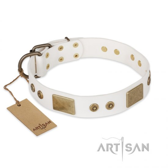 """Unforgettable Impress"" FDT Artisan Decorated Leather Doberman Collar with Decorations"