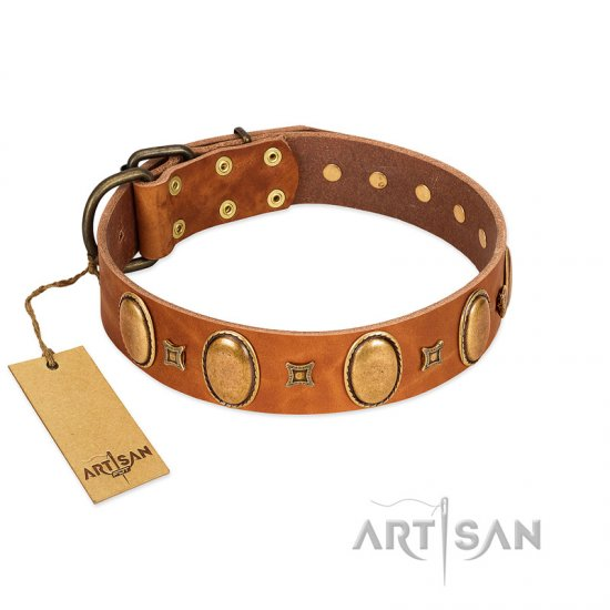 """Glossy Autumn"" Designer Handmade FDT Artisan Tan Leather Doberman Collar with Ovals and Studs"