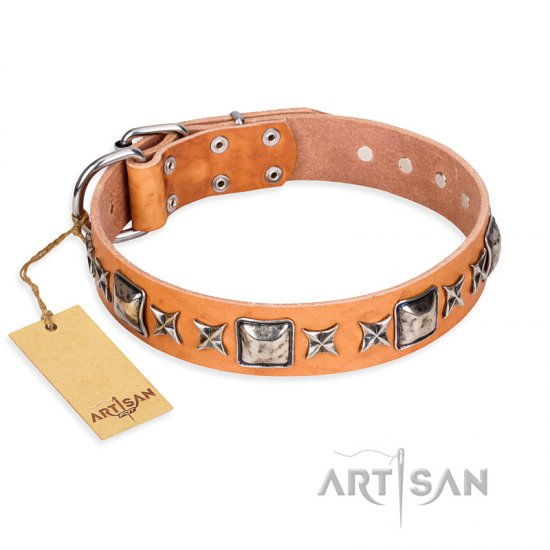 """Glamour Finery"" FDT Artisan Female Doberman collar of natural leather with stylish old-looking circles"