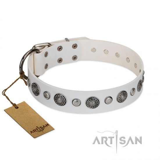 """Fluff-Stuff Beauty"" FDT Artisan White Leather Doberman Collar with Silver-like Studs and Conchos"