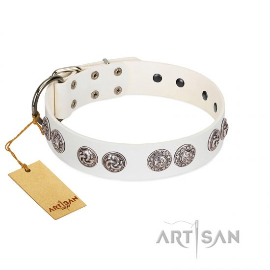 """Eye Candy"" Appealing FDT Artisan White Leather Doberman Collar with Chrome Plated Medallions"