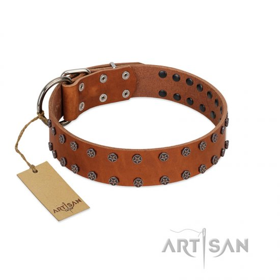 """Star Light"" Stylish FDT Artisan Tan Leather Doberman Collar with Silver-Like Studs"