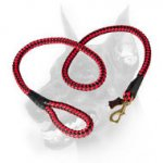 Doberman Dog Heavy-duty Nylon Cord for All-weather Activities