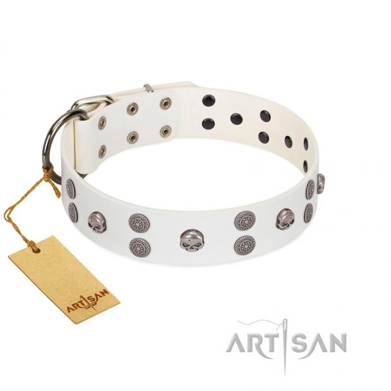 """Edgy Look"" FDT Artisan White Leather Doberman Collar with Silver-like Skulls"