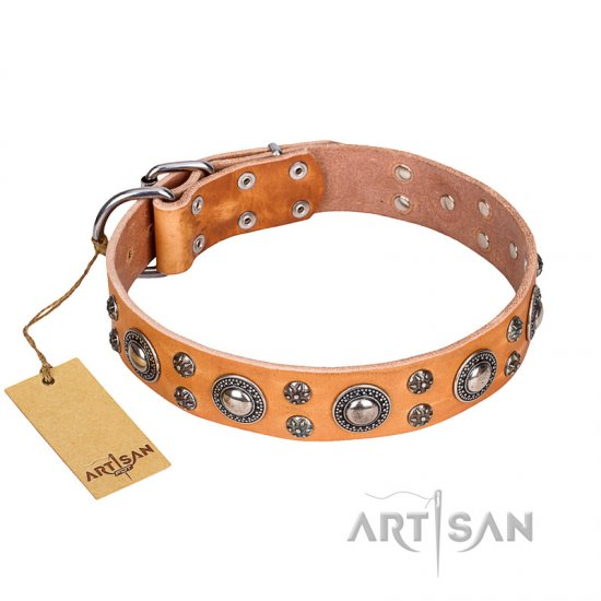 'Extra Sparkle' FDT Artisan Handcrafted Doberman Tan Leather Dog Collar