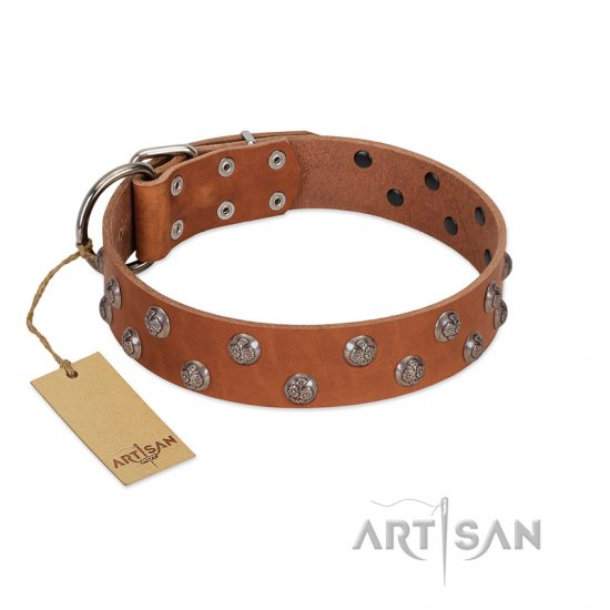 """Waltz of the Flowers"" Handmade FDT Artisan Tan Leather Doberman Collar with Chrome-plated Engraved Studs"