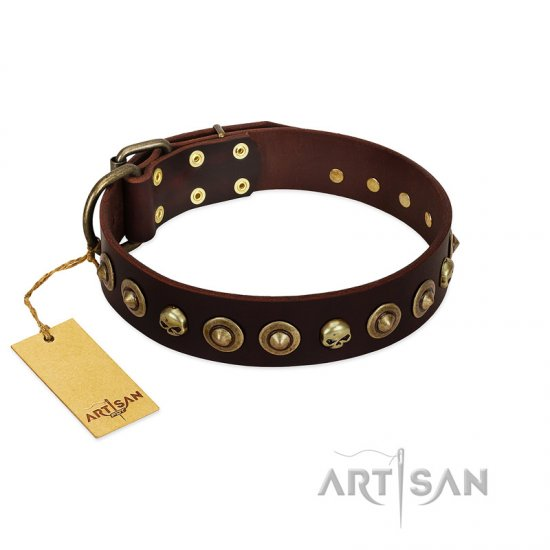 """Street Fashion"" FDT Artisan Brown Leather Doberman Collar Adorned with Circles and Skulls"