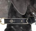Doberman Royal Nappa Padded Hand Made Leather dog collar