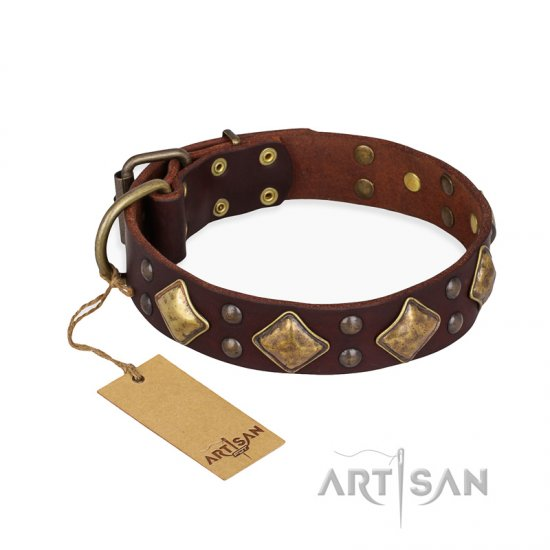 """Golden Square"" FDT Artisan Brown Leather Doberman Collar with Large Squares"