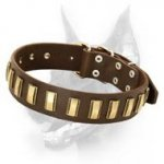 Sophisticated Leather Doberman Dog Collar with Brass Plates