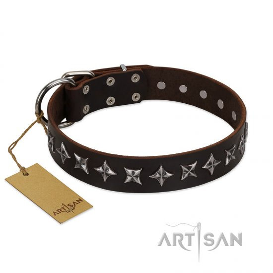 """Stars of Glory"" FDT Artisan Brown Leather Doberman Collar for Comfortable Walking"