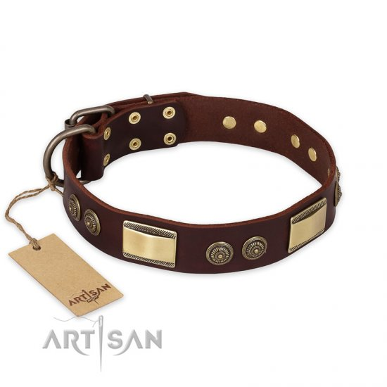 """Golden Stones"" FDT Artisan Brown Leather Doberman Collar with Old Bronze Look Plates and Circles"