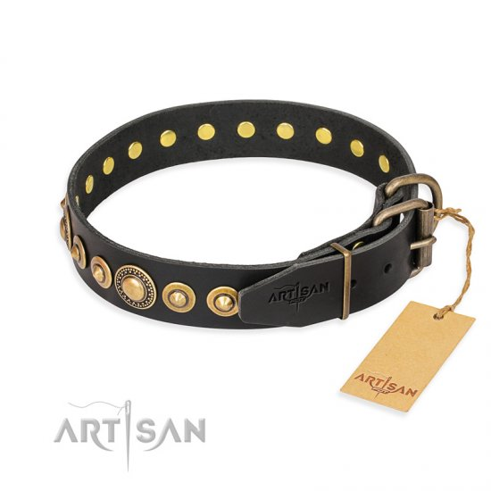 """Gold Mine"" FDT Artisan Black Leather Doberman Collar with Amazing Bronze-Plated Round Studs"