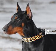 Doberman dog collar - Hand painted by our artists