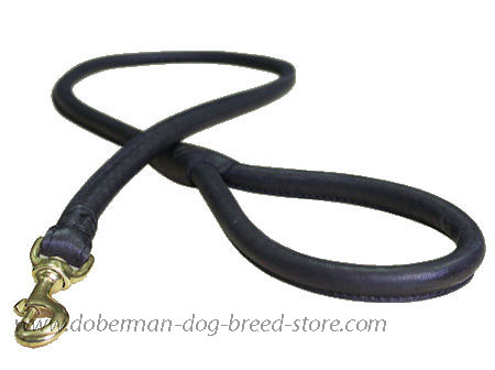 Matching Rolled Leather Dog Lead for Doberman