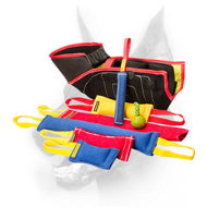 Doberman Puppy or Young Dog Fabulous Training Set + 3 Tugs for Free! ($36.70 saving)