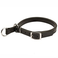 Adjustable Leather Slip Collar with Solid Nickel-plated hardware