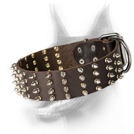 Extra Wide Doberman Dog Collar with 4 rows of Spikes