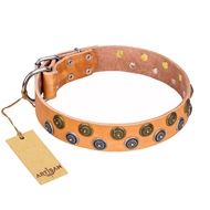 """Precious Sparkle"" FDT Artisan Tan Leather Doberman Collar with Gold and Silver-like Studs"