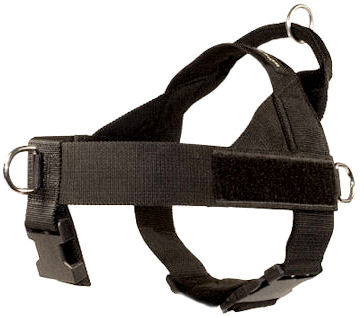 Excellent Leather Harness for Agitation Training