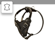 leather-harnesses-subcategory-leftside-menu