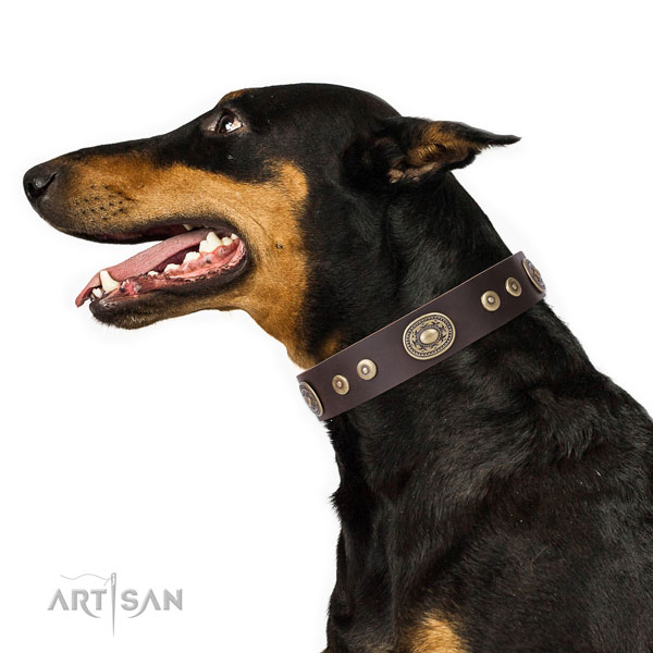 Inimitable studded natural leather dog collar for walking