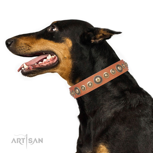 Corrosion resistant buckle and D-ring on leather dog collar for everyday walking