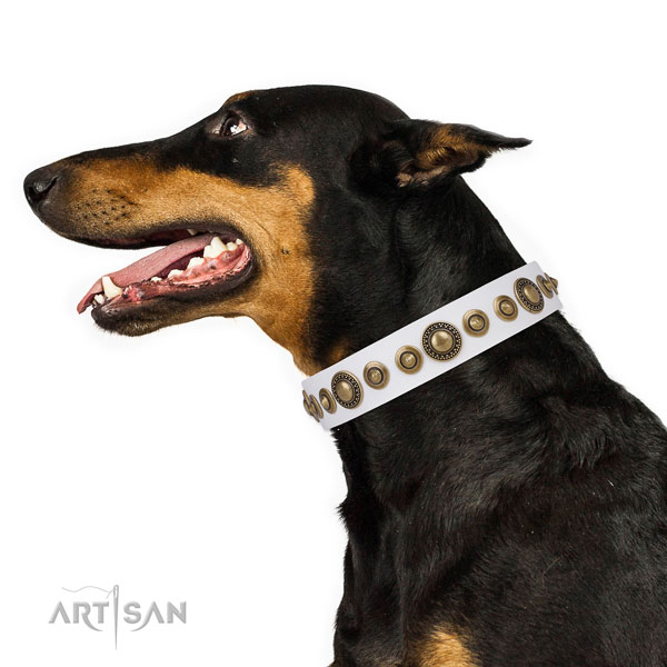 Reliable buckle and D-ring on natural leather dog collar for everyday use