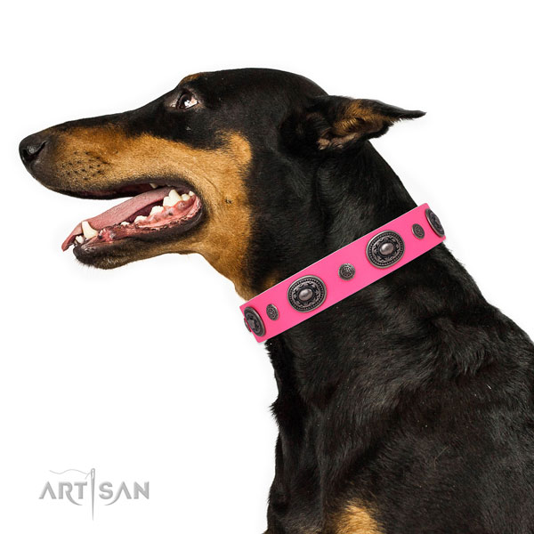 Leather dog collar with reliable buckle and D-ring for stylish walking