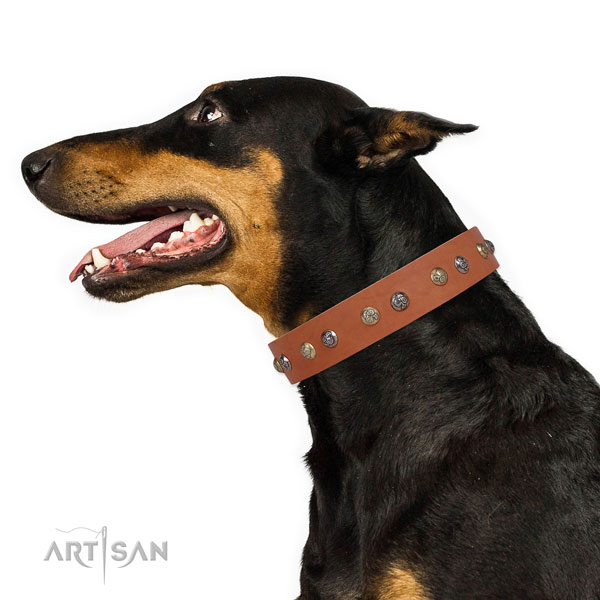 Full grain leather dog collar with corrosion resistant buckle and D-ring for walking