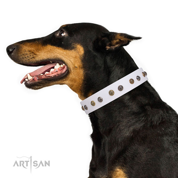 Comfy wearing studded dog collar made of quality genuine leather