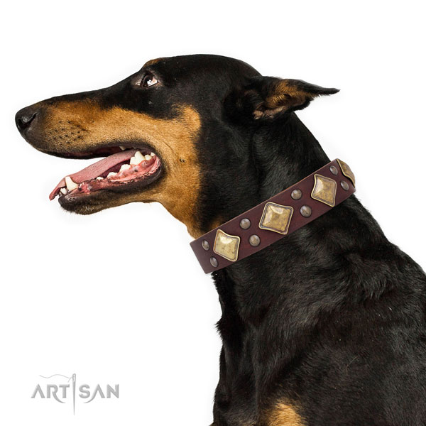 Everyday use decorated dog collar made of strong genuine leather