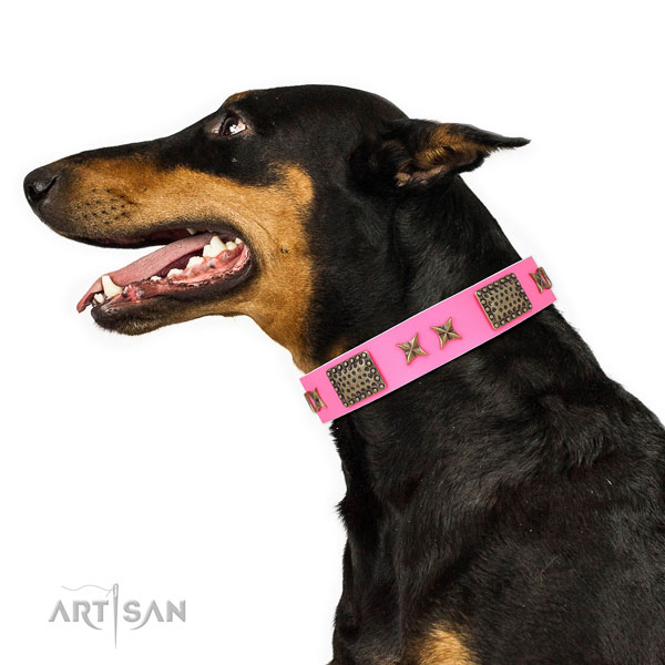 Unusual adornments on daily use full grain genuine leather dog collar