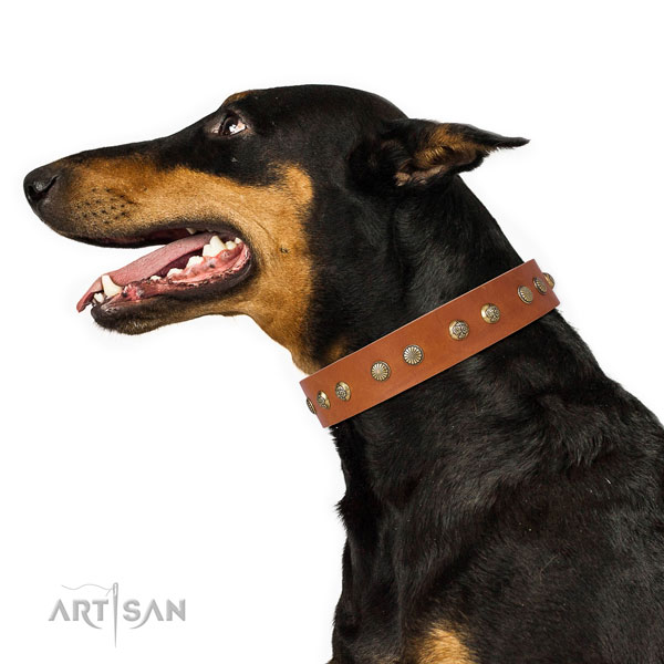 Inimitable adornments on handy use full grain natural leather dog collar