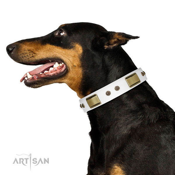 Handy use dog collar of natural leather with top notch studs