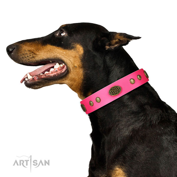 Rust-proof hardware on full grain leather dog collar for everyday walking