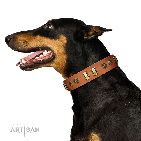 Corrosion resistant fittings on full grain natural leather dog collar for basic training