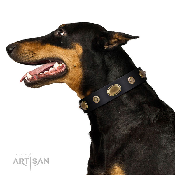 Comfortable wearing dog collar of natural leather with trendy adornments