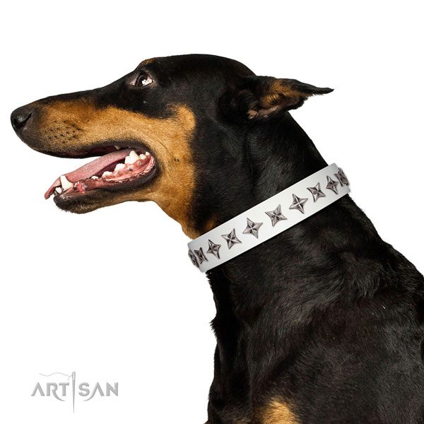Top notch leather dog collar with trendy adornments