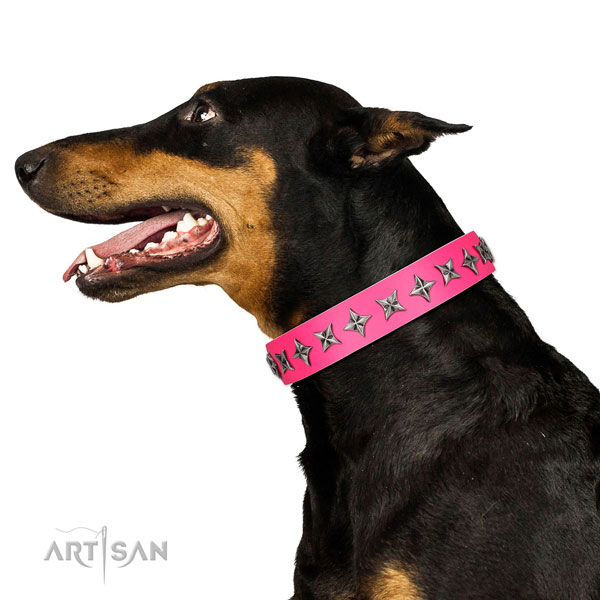 Finest quality genuine leather dog collar with exceptional adornments