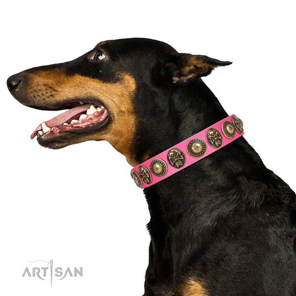 Exceptional full grain natural leather collar for your stylish canine