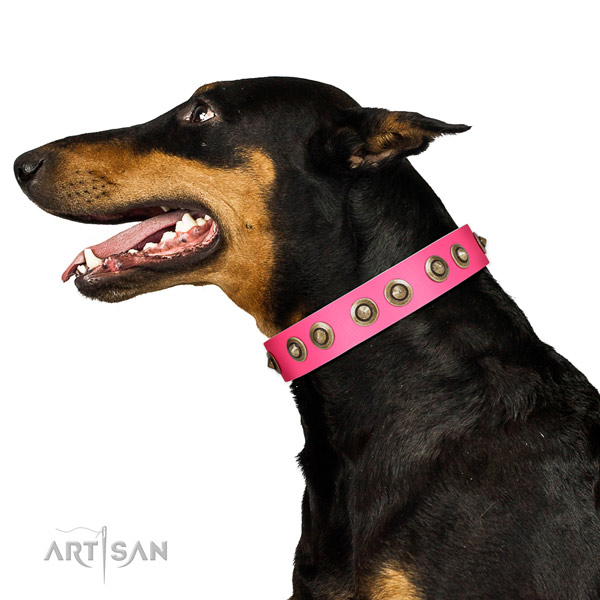 Genuine leather collar with embellishments for your impressive canine