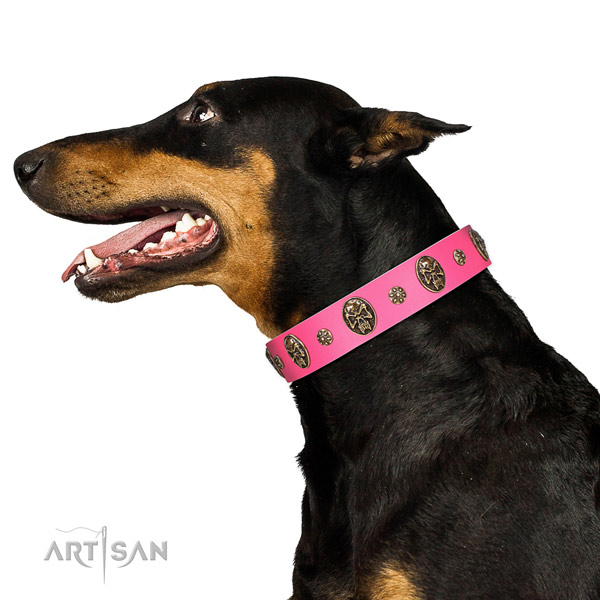Adjustable dog collar created for your beautiful four-legged friend