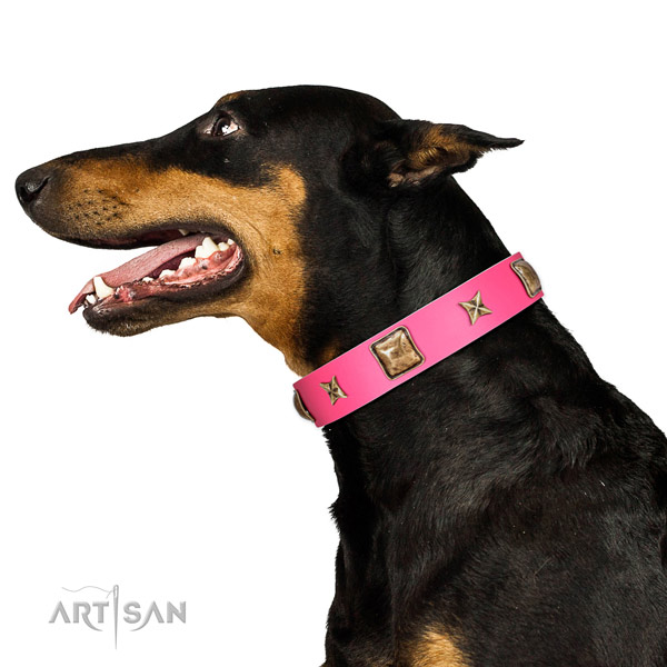 Full grain leather dog collar of high quality material with fashionable embellishments
