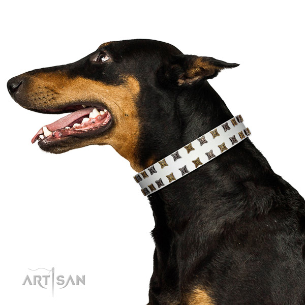 Reliable leather dog collar with adornments for your pet