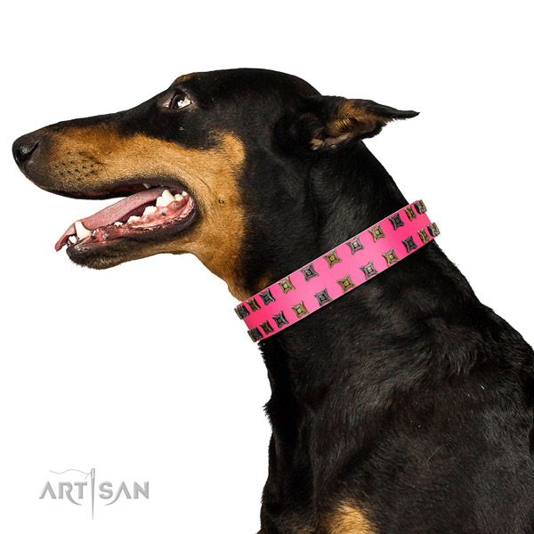 Top notch genuine leather dog collar with adornments for your pet